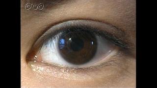 目のしくみ-中学