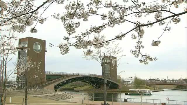 サムネイル画像:富岩運河環水公園 桜の景色