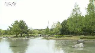 サムネイル画像:富山市 稲荷公園の新緑