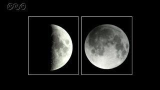 いろいろな形の月