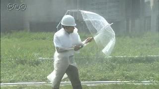 台風の強い風と雨