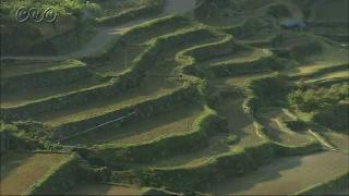 気候や地形をいかした米づくり