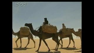 砂漠の暮らし